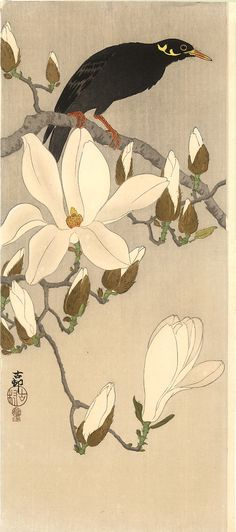 Myna on Magnolia , Koson 1919 ca