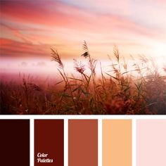 Color Palette--more muted sunrise/sunset colors. Colour Pallette, Colour Schemes, Color Patterns, Color Combos, Best Color Combinations, Sunset Color Palette, Color Concept, Color Balance, Balance Design