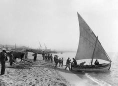 Parella de bous traient un llagut en un dia de bonança per a la navegació. Mataró, ca. 1930. Col·lecció Roisin / IEFC