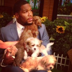 Who wouldn't want to be covered in #puppies! #BowWow #PuppyWeek Tune in all this week for puppies!