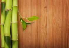 How Has Bamboo Flooring Become Ideal And Popular Among Homeowners?  #flooring #homedecor