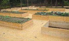 Rectangle-Raised-Bed-Garden.jpg