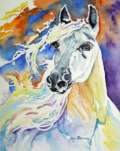 Browse through images in Joy Skinner's Animals and Still Lifes collection. Joy Skinner Fine Art - Animals and Still Lifes features contemporary works of art - Watercolor, Oil, and Acrylic Paintings as well as some Photography. Watercolor Horse, Watercolor Paintings, Equine Art, Horse Art, Pet Birds, Fine Art America, Horse Paintings, Drawing Animals, Horses