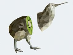 Kiwi Bird by Victor Cinq-Mars