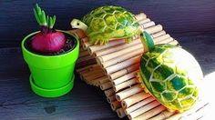 karpuz kabuğundan kaplumbağa