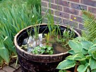 If you have a small yard, you may think that you have no space for a water feature, but there is no need to miss out on the aesthetic and wildlife benefits that a pond can bring. HGTV Gardens has these tips for planting a pond in a pot.