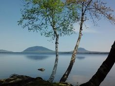 Casey's Spencer Bay Camps on Moosehead Lake in Maine.