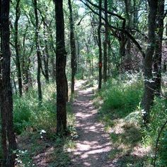 Lewisville Independent School District Outdoor Learning Area (LISDOLA) is a really great place to hike and learn with kids {near Dallas}