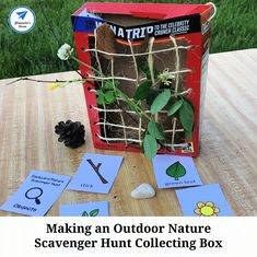 Making an Outdoor Nature Scavenger Hunt Collecting Box - JDaniel4s Mom Fire Truck Activities, Farm Activities, Steam Activities, Nature Hunt, Nature Scavenger Hunts, Cool Science Experiments, Fun Games For Kids, Ocean Themes, Lego Building