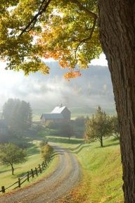 Road To Barn On Foggy Morning