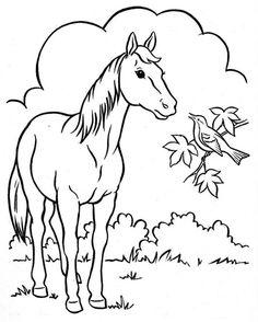 Coloring Book~Springtime Welcome - Bonnie Jones - Álbuns da web do Picasa Horse Drawings, Bird Drawings, Easy Drawings, Animal Drawings, Horse Coloring Pages, Colouring Pages, Coloring Books, Coloring For Kids, Adult Coloring