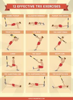 12 Effective TRX Exercises | Fitness Republic