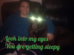 Lmao my dog hypnotizing you Hypnotize Yourself, Look Into My Eyes, Dogs, Movie Posters, Movies, Photos, Fictional Characters, Pictures, Films