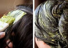 Good Ideas For You   DIY Rosemary Avocado Coconut Oil Hair Mask