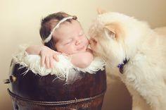 Adorable Baby + Pet Photos
