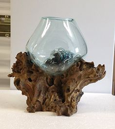 Hand Blown Molten Glass and Teak Wood Root Sculptured Terrarium / Vase / Fish Bowl In the Garden and More http://www.amazon.com/dp/B00P4DFVLQ/ref=cm_sw_r_pi_dp_wiz8wb0SKF42K