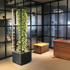 CUBE planted mobil greenwall and room divider to create healthy green spaces with functional light for vital plants and improved air quality in office, restaurant or living room spa Hamburg Interior Garden, Interior Plants, Plant Tower, Coffee Shop Interior Design, Cozy Backyard, New York City Apartment, Office Space Design, Grow Room, Aquarium Design