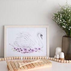Odette Swan Illustration