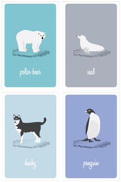 Polar Animal Series Art Print by Denise Medina  artic animal theme for nursery