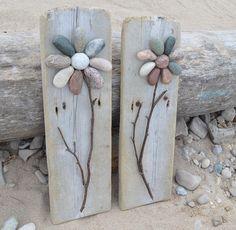 Rock Garden fiori di pietra fiori di roccia ghiaia fiori