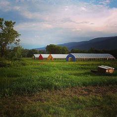 Sunset on The Harvest Festival at Mighty Food Farm #vtfood #Vermont #sunset #organic #realfood