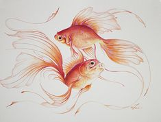 Fishy Throw Pillows - Voting Ends / Prizes Awarded:Friday, December 26th, 2014 - 10:13 PM ET - Fine Art America