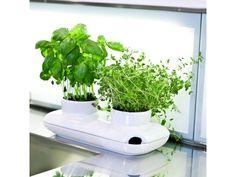 Samozavlažovací květináč na bylinky SAGAFORM Duo Herb. Dvojdílná porcelánová nádoba na dva květináče se zavlažovací miskou.…