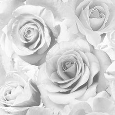 Madison Rose Wallpaper Soft Grey - Wallpaper from I Love Wallpaper UK Metallic Wallpaper, Grey Wallpaper, Wallpaper Roll, Pattern Wallpaper, Bedroom Wallpaper, Feature Wallpaper, Painting Wallpaper, Vinyl Wallpaper, Wallpaper Ideas