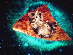 Purry pizza