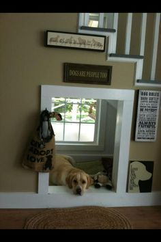 """I love this under stair indoor """"dog house."""" Its out of the way and it even has a window.  What more could a dog want?:"""