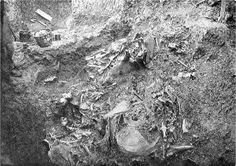 Union Oil geologist W. W. Orcutt is credited with first recognizing fossilized prehistoric animal bones preserved in pools of asphalt on the Hancock Ranch in 1901. These would be the first of many fossils excavated from the La Brea Tar Pits.