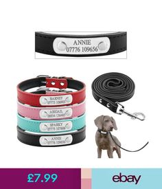 Leads & Head Collars Soft Padded Leather Dog Collars And Leads Set Personalised For Small Medium Dogs #ebay #Home & Garden