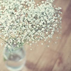 I think i've come up with the perfect thing to put under the floating candles—baby's breath.