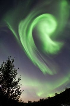 Northern Lights - Aurora - The sky is listening - the ear of god Northen Lights, Natural Phenomena, Sky And Clouds, Beautiful Sky, Science And Nature, Night Skies, Wonders Of The World, Cosmos, Mother Nature