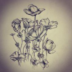 Poppies (Poppy flower) tattoo sketch by - Ranz