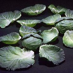 Not metal but GLASS cabbage leaves made by the Higuchis using pate de verre molded glass technique