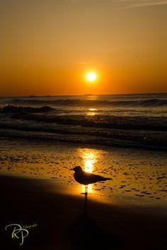 Sunrises-Sunsets: Sunrise-Myrtle Beach, South Carolina