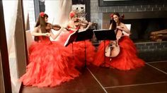 Свадьба - струнное трио Violin Group DOLLS, классика и поп музыка