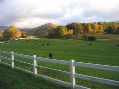 North Carolina....By October Blue