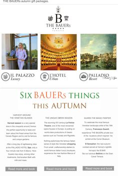 THE BAUERs Newsletter