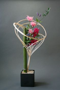 Variações florais