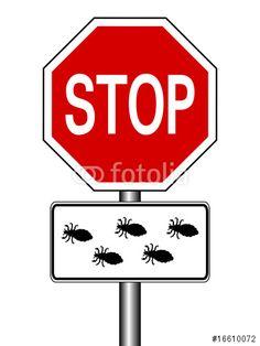 """Laden Sie den lizenzfreien Vektor """"Stop - Läuse"""" zum günstigen Preis. Stöbern Sie in unserer Bilddatenbank (de.fotolia.com/...) und finden Sie schnell das perfekte Stockbild !"""