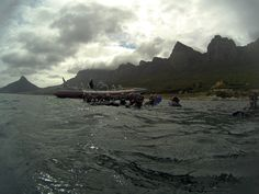 V&a Waterfront, Snorkelling, The V&a, Underwater World, Cape Town, Scuba Diving, Mount Everest, Seal, Trips