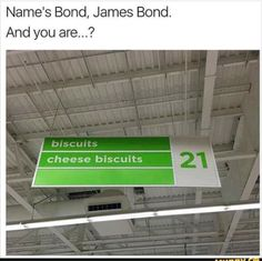 Nice to meet you bond   funny pictures