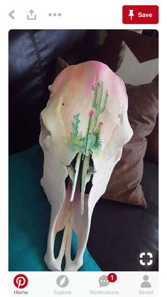 Natural cow skull with hand painted cactus scene Deer Skull Art, Cow Skull Decor, Cactus Painting, Skull Painting, Belly Painting, Painted Animal Skulls, Antler Art, Antler Crafts, Cow Head
