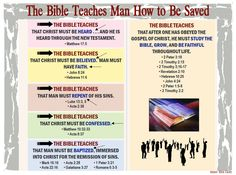 For over 2 centuries, Christianity was successful without the divisive teachings of denominations, creeds, doctrines, or institutions of men. Bible Study Notebook, Bible Study Group, Bible Study Tools, Bible Journal, Bible Notes, Bible Verses, Scriptures, Children's Bible, Learn The Bible