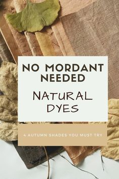 No Mordant Needed Fabric Yarn, How To Dye Fabric, Dyeing Fabric, Natural Dye Fabric, Natural Dyeing, Homemade Wood Stains, Fabric Dyeing Techniques, Lab, Nature Crafts