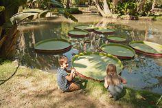 Jardim Botanico in Rio de Janiero