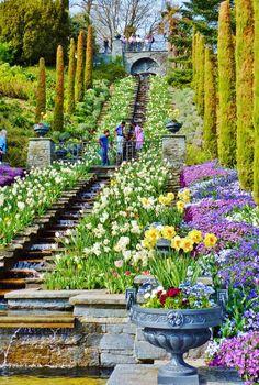 A trip to the Flower Island of Mainau   Lake Constance - Germany - Foxy Folksy