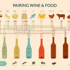 It's time to pair wine like the sommelier! Follow the guidelines to make the best food and wine pairings at every meal. Eight main styles of wine matches.